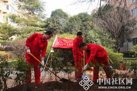 兴隆园社区组织青年志愿者开展全民植树活动