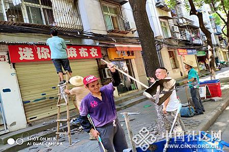 自力社区打扫雨阳棚垃圾