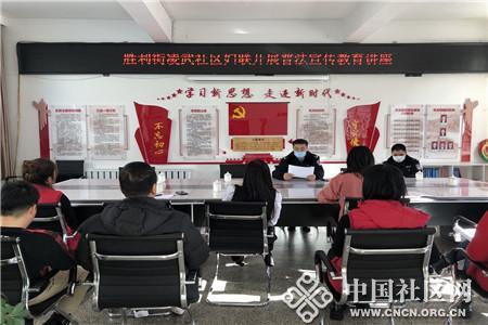 凌武社区妇联开展普法教育宣传讲座